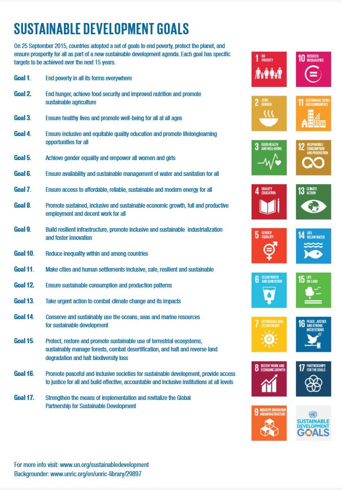 SDGs Goals Handout