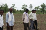 Landwirtschaft II.jpg